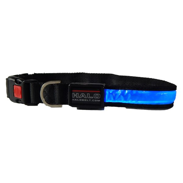Blue Halo LED Collar