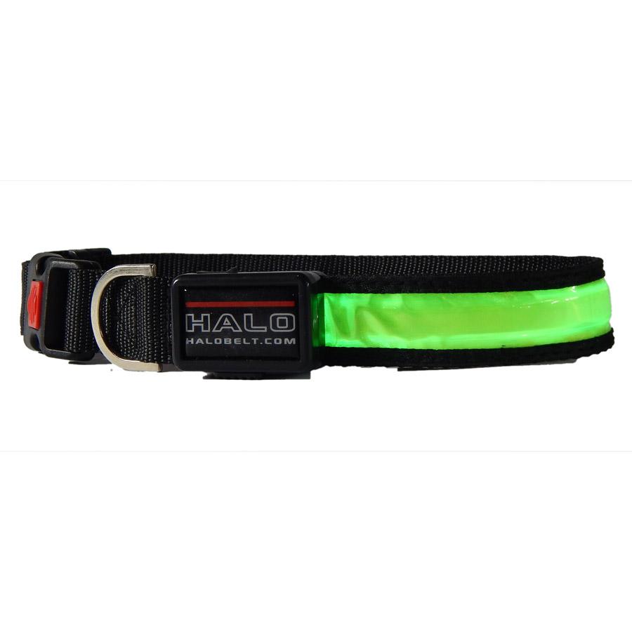 Green Halo LED Collar