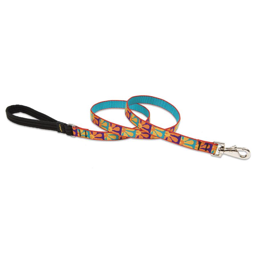 Crazy Daisy, leash