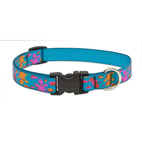 Lupine Wet Paint, collar