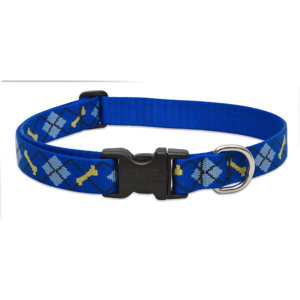 Dapper Dog, collar