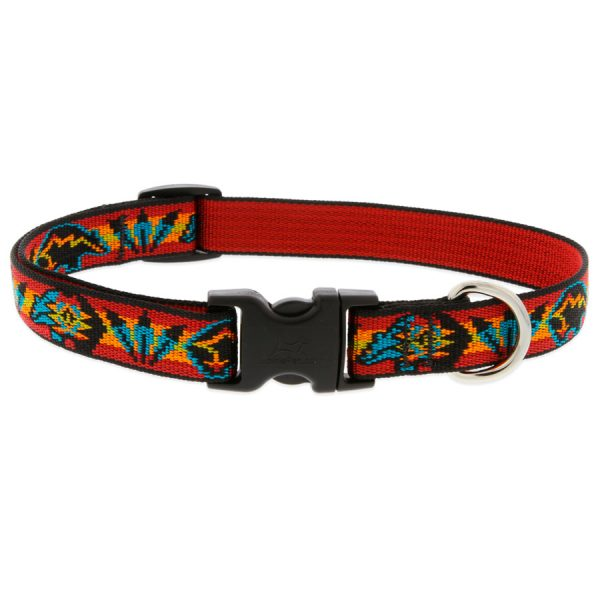 Spirit Bear Lupine, collar