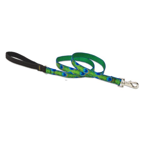 Tail Feathers Lupine, leash