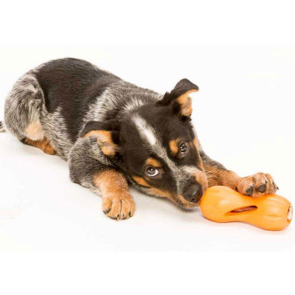 dog, toy west paw, treat