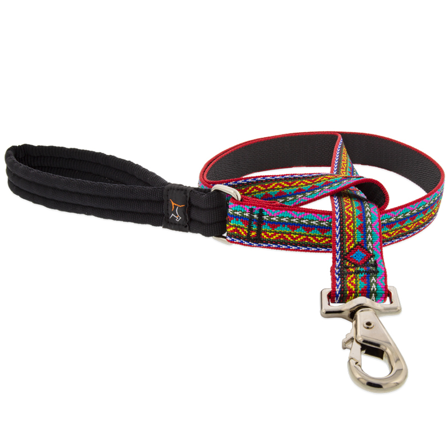 dog, lupine, leash