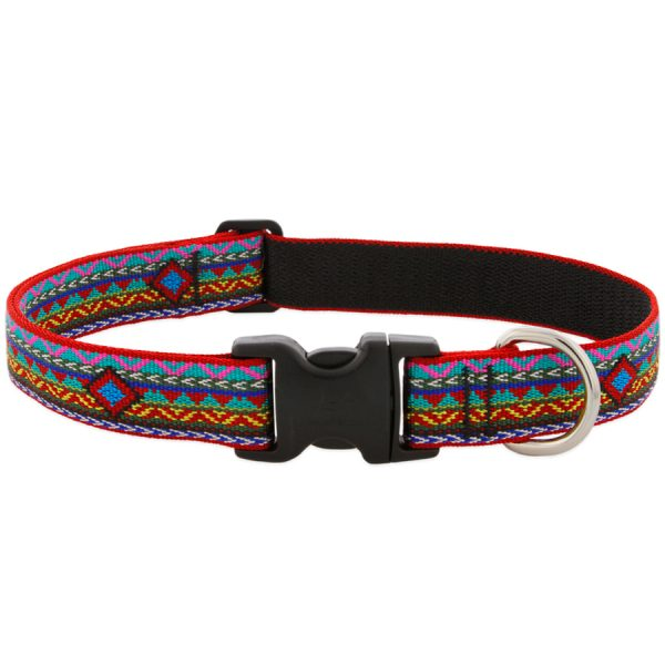 dog, lupine, collar