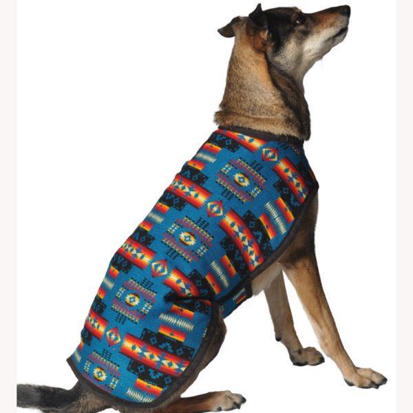 Chilly-Dog--Turquoise-Southwest-Blanket