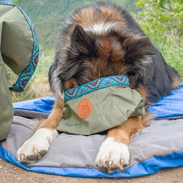 Olive Dog Bowl great for food, water, backpacking and traveling