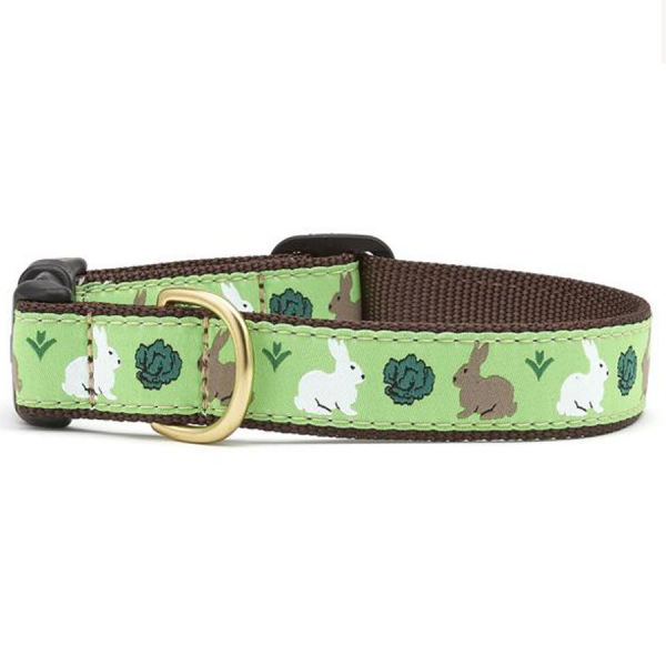 White and brown bunny rabbits on a light green collar