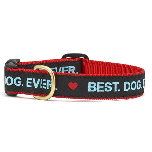 Collar for dogs with hearts