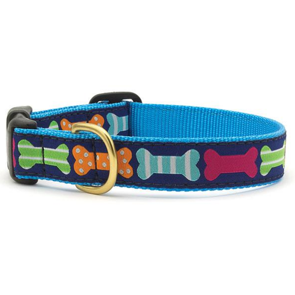 Colorful collar with bone design on a blue background