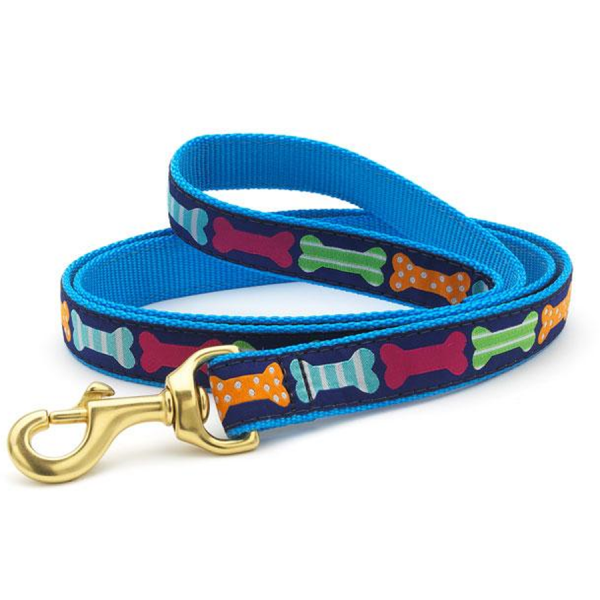 Colorful leash with bone design on blue background