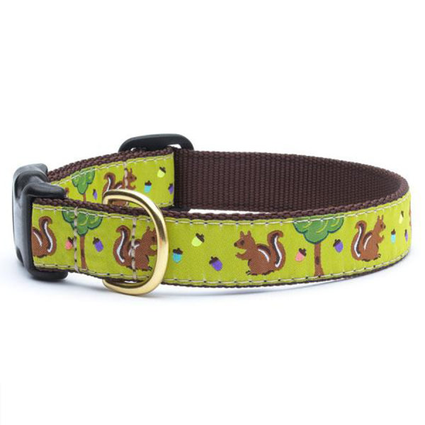 Squirrels and trees on a yellow/green collar