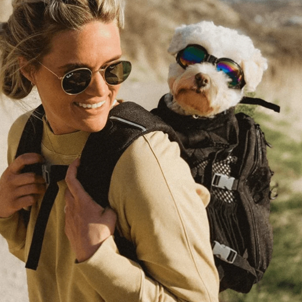 Black carry doggie backpack plus storage on woman