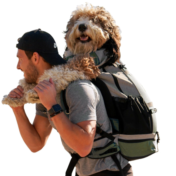 A large dog being carried in the Rover K9 Sport Sack