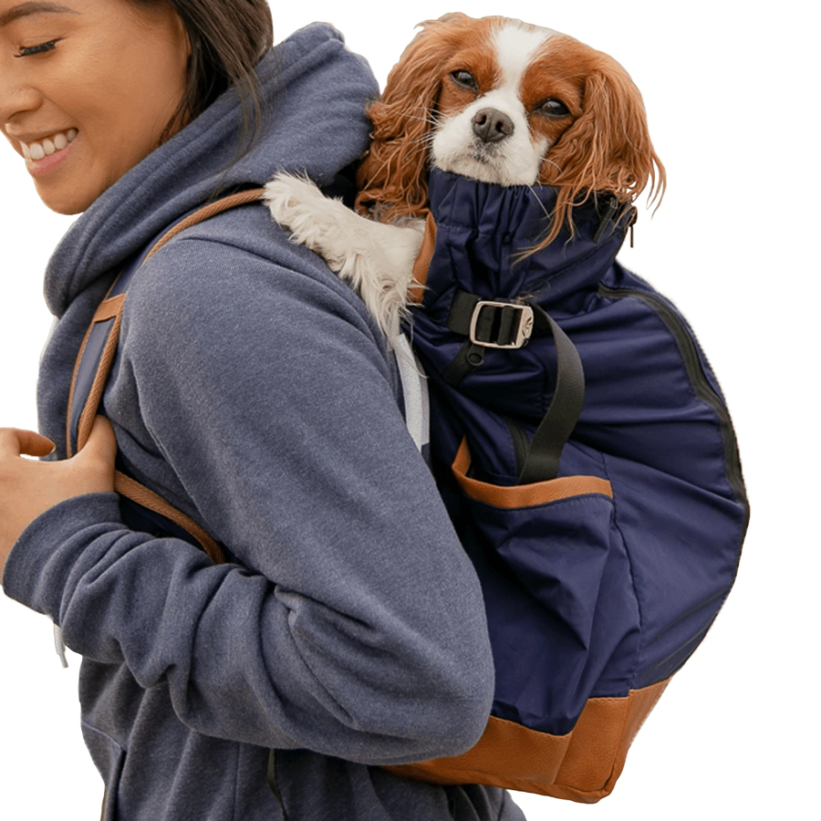 A carrier for your dog