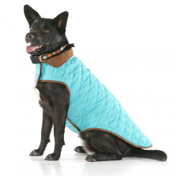 Quilted Coat Aqua/Brown on a dog