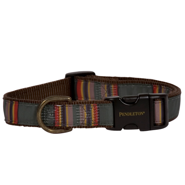 Pendleton Vintage Camp Collar
