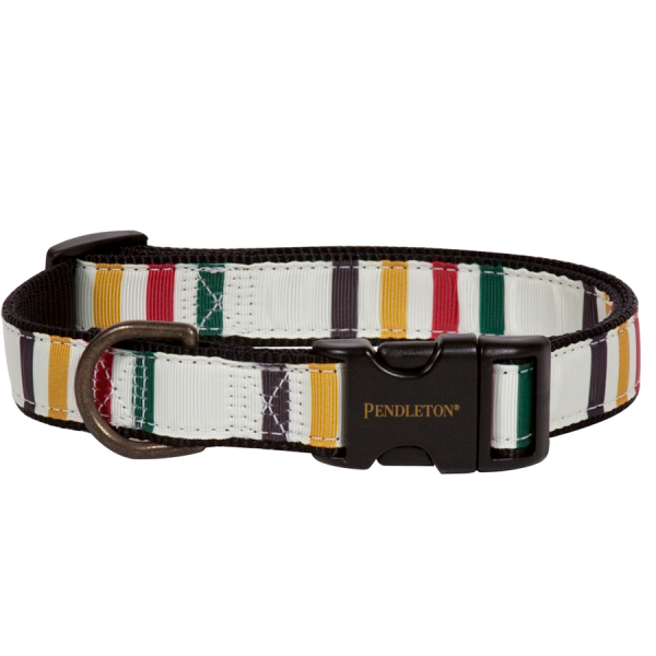 Pendleton Glacier leash