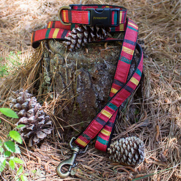 Pendleton Mount Rainier dog collar and leash