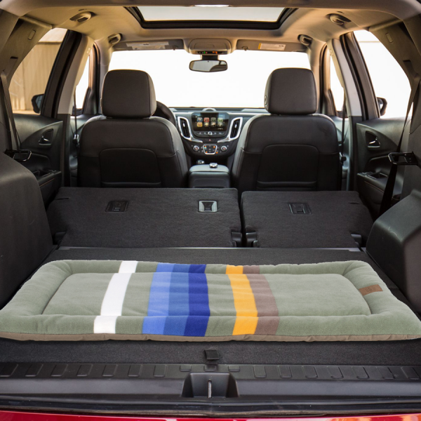 Pendleton Rocky Mountain Cushion in SUV