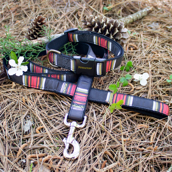 Pendleton Acadia-National-Park Collar & leash