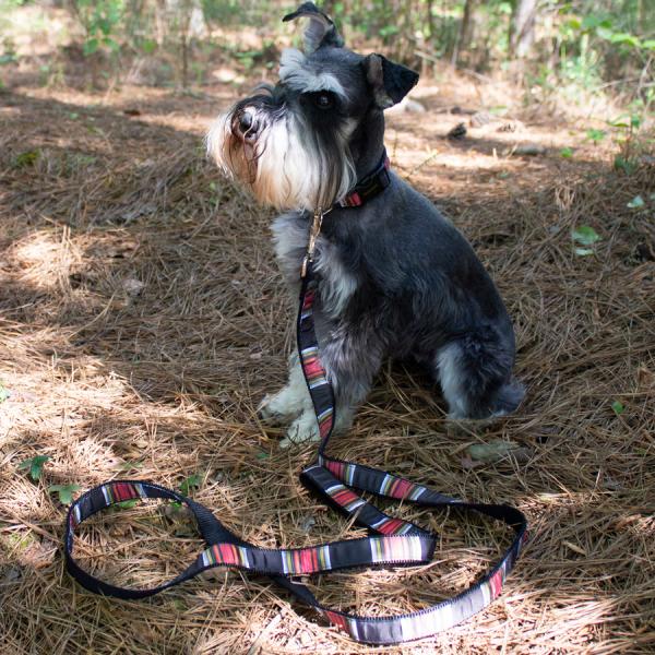 Pendleton Acadia-National-Park Collar & leash