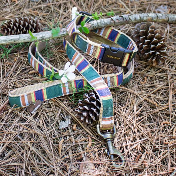 Pendleton Badlands National Park Collar & Leash