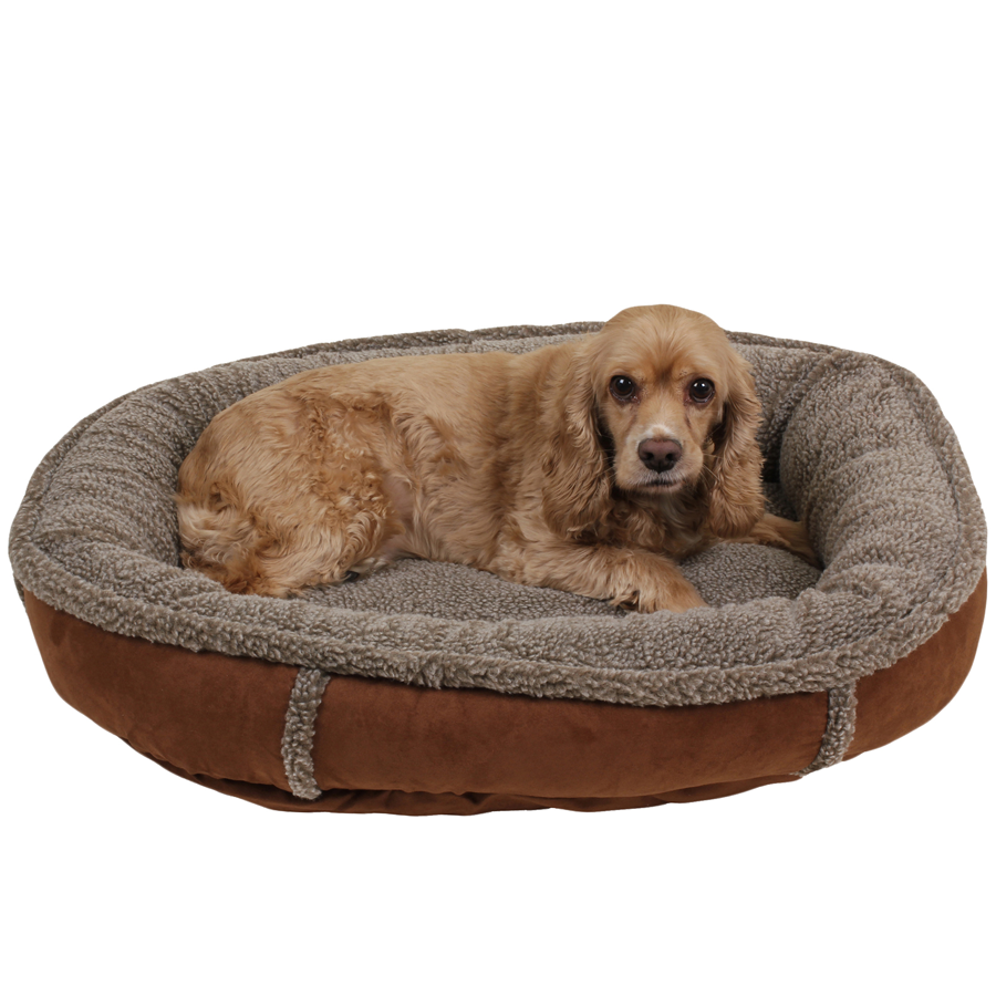 Small dog on a tipped berber fleece Chocolate bed