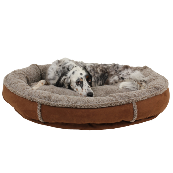 Dog lying on a Plush Round Comfy Cup Chocolate dog bed