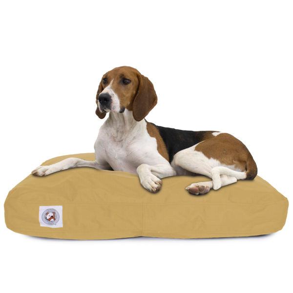 Dog on Brutus Tuff Napper canvas bed