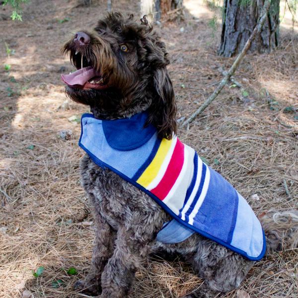 Pendleton Yosemite National Park Coat on Dog