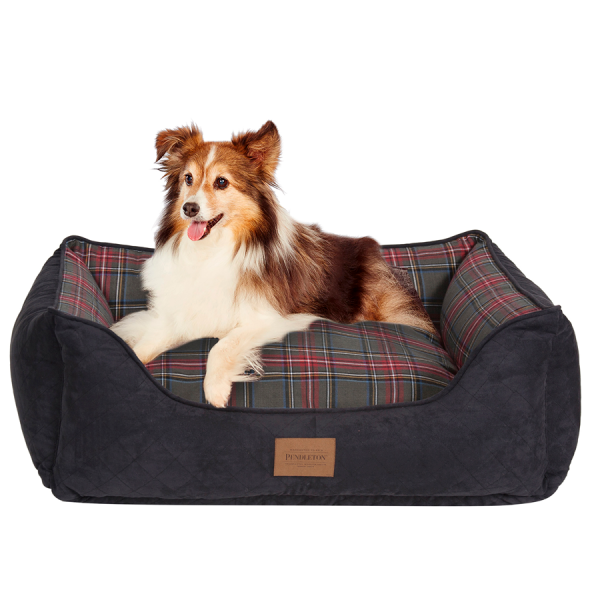 Collie on a Grey Stewart Tartan kuddler