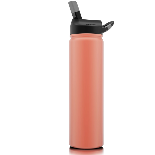 27 ounce tumbler with lid and straw