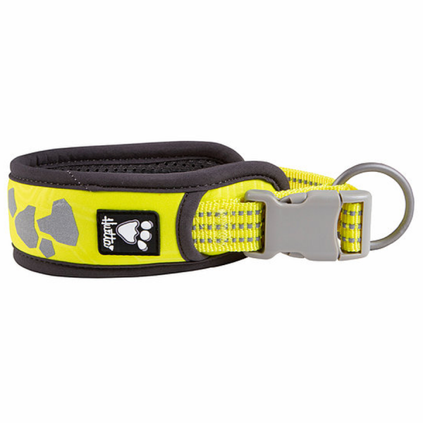 A yellow dog collar