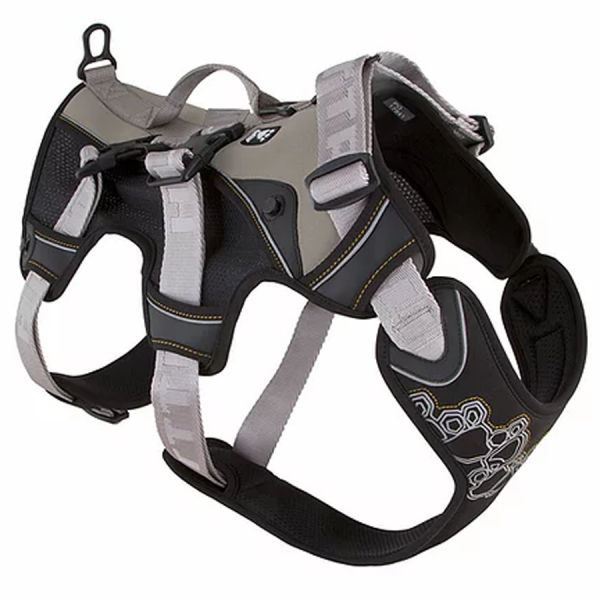 Harness for a dog